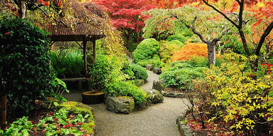 RustomjeeUrbania_Aroma garden